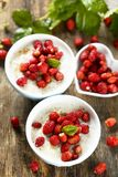 Rice pudding with wild strawberry. Rice pudding or Milchreis with wild strawberry and spices Royalty Free Stock Images