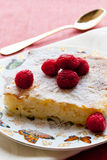 Rice pudding with raspberries. On beautiful plate royalty free stock photo
