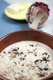 Rice red chicory and gorgonzola cheese Stock Image