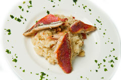 Rice with red mullet fillet Stock Images