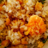 Rice with red yolk Royalty Free Stock Photo