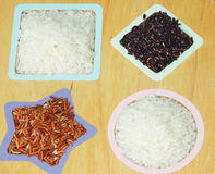 Rice and rice berry. On wood tray Stock Photos