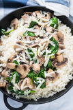 Rice risotto with mushrooms, parmesan and spinach close up. Italian cuisine Stock Photography