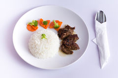 Rice with roast beef Royalty Free Stock Images