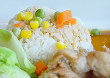 Rice with roast pork Royalty Free Stock Photography