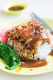 Rice roasted duck with sauce Stock Images