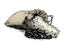 Rice in the sack Stock Image
