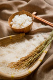 Rice on sackcloth Royalty Free Stock Images