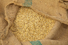 Rice. On sackcloth, Food Backgrounds Royalty Free Stock Images