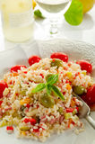 Rice salad Stock Photography