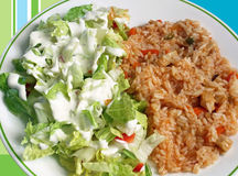 Rice and Salad Royalty Free Stock Image