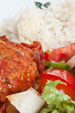 Rice, salad and meat Stock Images