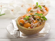 Rice salad with melon Royalty Free Stock Images