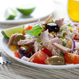 Rice salad with tuna and vegetables Stock Images