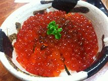 Rice with salmon eggs. Or roe ,Japanese food Stock Photos