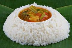 Rice with sambar . royalty free stock image