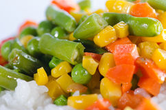 Rice and sautéed vegetables close up Royalty Free Stock Photos