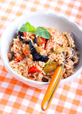 Rice with sauteed vegetables Royalty Free Stock Photos