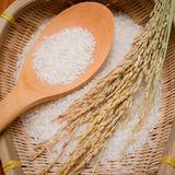 Rice,scoop in a bamboo basket Royalty Free Stock Image