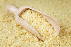 Rice scoop full Stock Photography
