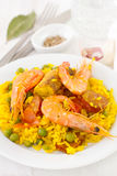 Rice with seafood, chicken Royalty Free Stock Photo