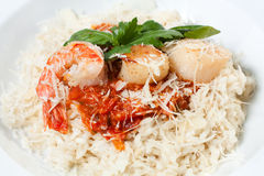 Rice with seafood and tomato sauce Stock Images