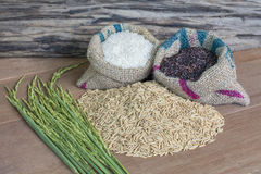 Rice seed. Brown rice, keep healthy concept, brown background Royalty Free Stock Photos