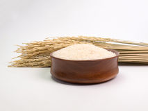 Rice seed Royalty Free Stock Photo
