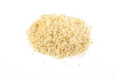 Rice seed Royalty Free Stock Photos