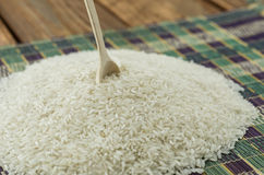 The rice seeds Stock Photo