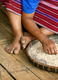 Rice selection. A peasant of a Thai tribe selecting rice royalty free stock photography
