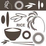 Rice. Set Royalty Free Stock Photo