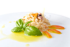 Rice and shellfish. A dish of rice and shellfish with olive oil and vegetables garnish Royalty Free Stock Photography