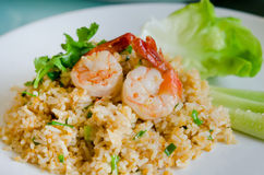 Rice and shrimp Royalty Free Stock Photography