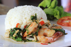 Rice and shrimp with Basil and chili sauce Royalty Free Stock Photos