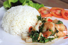 Rice and shrimp with Basil and chili sauce Royalty Free Stock Images