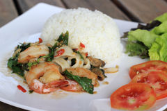 Rice and shrimp with Basil and chili sauce Stock Photo