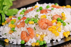 Rice with shrimp Stock Images