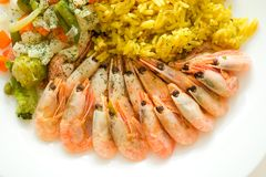 Rice and shrimps Royalty Free Stock Images