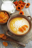 Rice soup with dried apricots Royalty Free Stock Photography
