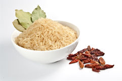 Rice and spice Royalty Free Stock Photography