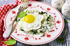 Rice with spinach and fried egg. Royalty Free Stock Images