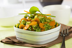 Rice with spinach sauce Royalty Free Stock Photo