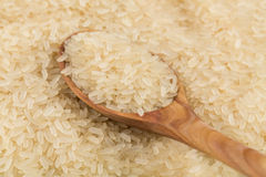Rice in spoon Royalty Free Stock Photo