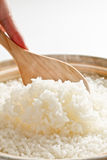 Rice, steam Stock Image