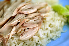 Rice steamed with chicken Stock Photo