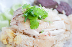 Rice steamed with chicken soup Stock Photo