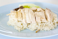 Rice steamed with chicken soup. Stock Photos