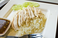Rice steamed with chicken Royalty Free Stock Photo