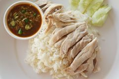 Rice steamed with chicken soup. Rice steamed in chicken broth. Poached chicken served with small portion of ginger and chili sauce Royalty Free Stock Photo